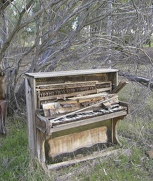 Wambyn Olive Farm; sanctuary for ruined pianos.