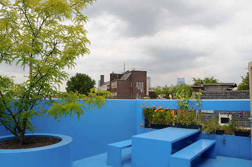mvrdv - blue house-7
