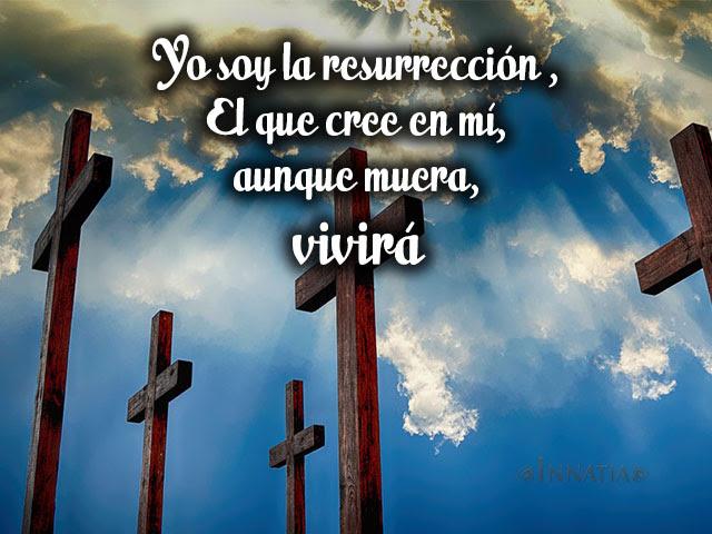 Frases De Jesus Sobre Los Ninos El Amor La Fe Y Mas Innatia Com