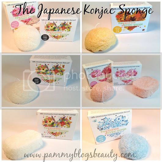 An Everyday Favorite: The Japanese Konjac Sponge