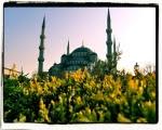 sultanahmet-mosque