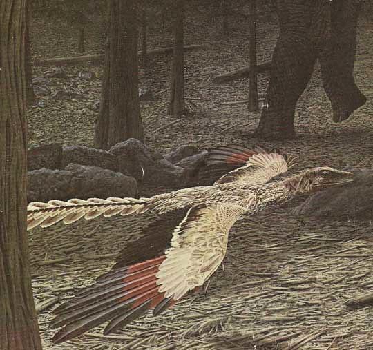 John Gurche Archaeopteryx