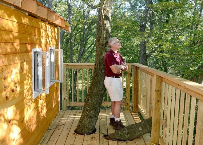 choáng với căn nhà gỗ trên cây