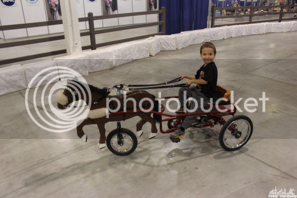 CNE Teddy rides