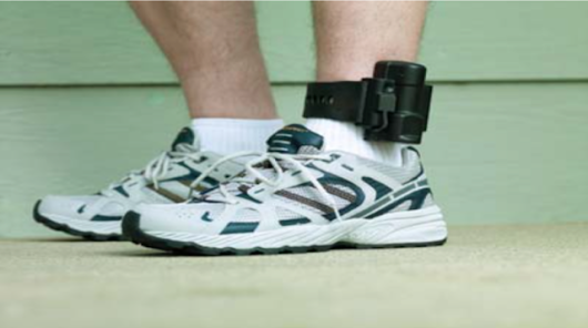 Felon's lifetime GPS monitoring upheld by US federal appeals court | Ars Technica