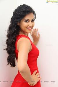 Disha Pandey Red Dress