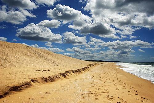 Ninety Mile Beach, Lakes, Entrance, Victoria, Australia IMG_4614_Lakes_Entrance