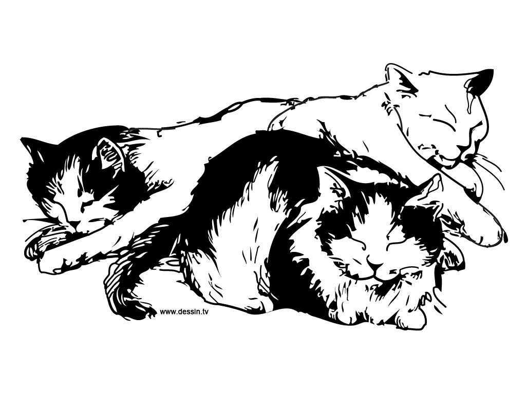 Coloriage Chats Qui Dorment