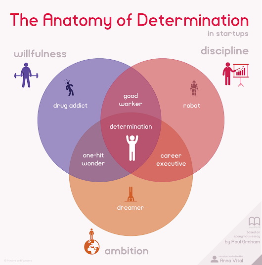 The Anatomy Of Determination In Startups - Infographic Chart