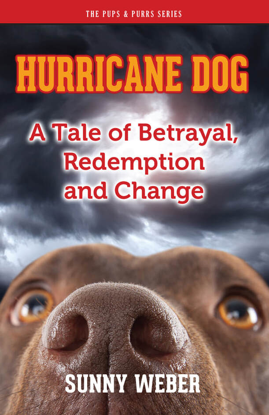 Hurricane Dog by Sunny Weber