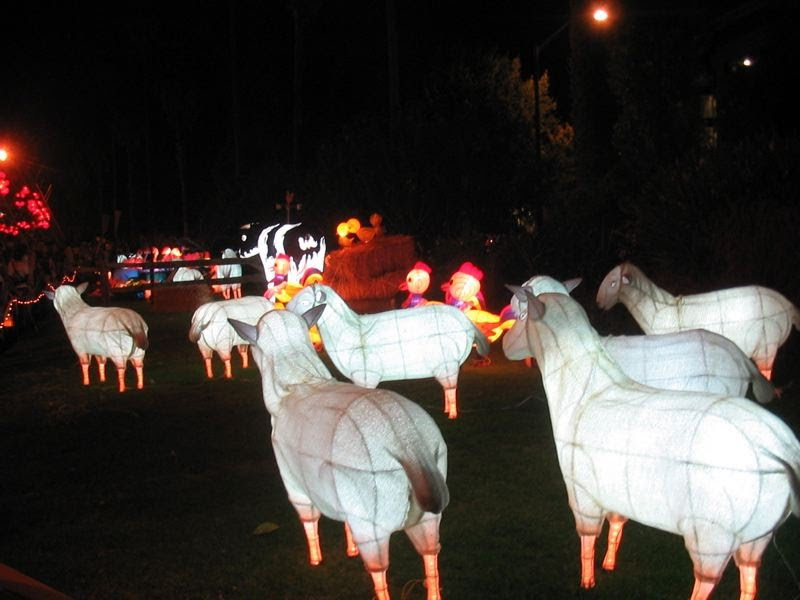 Sheep lanterns