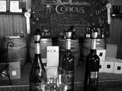 Copious Winery - wine tasting