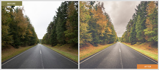 Autumn preset (Free) for Adobe Lightroom - Create a colorful matte effect