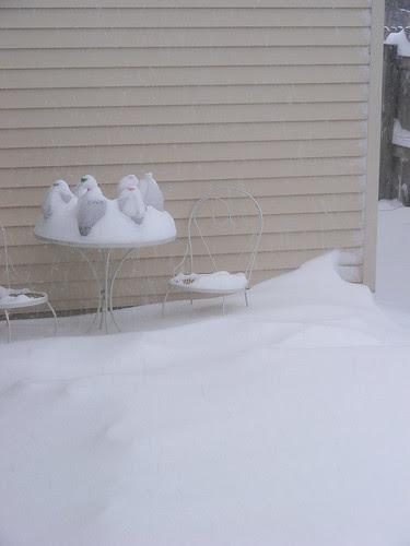 Winter sowing method, indeed