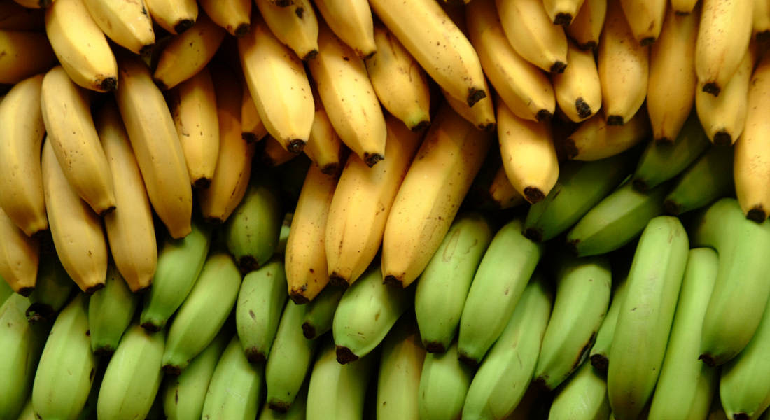 Geekswipe - Why Bananas Are Radioactive - Res - Flickr - 1