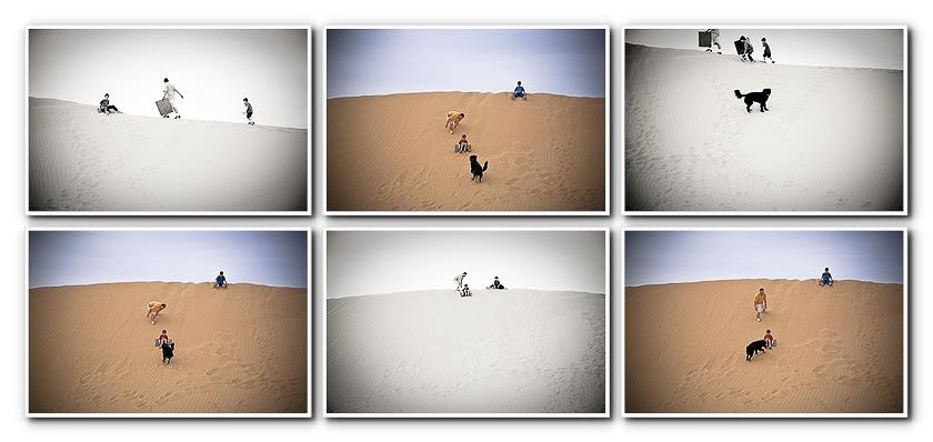 sand dunes sledding