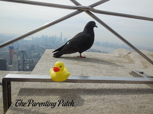 The Duck and the Pigeon on the Empire State Building: The Rubber Ducky Project Week 8 | Parenting Patch