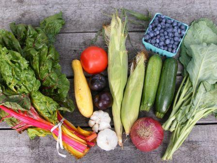 My Haul from the 07/06/08 Farmer's Market