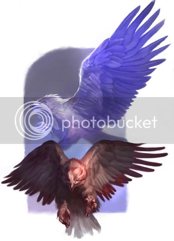 hawks.jpg beasthawkpair image by Dialexis