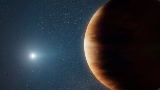 Scientists Find the First Known Planet to Have Survived the Death of Its Star