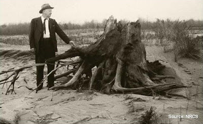 Hugh Hammond Bennet, first Chief of the Soil Conservation Service, inspects wind eroded farmland near Ottawa Co., Michigan, 1977. (in the public domain)
