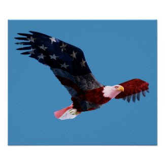 Patriotic Bald Eagle print