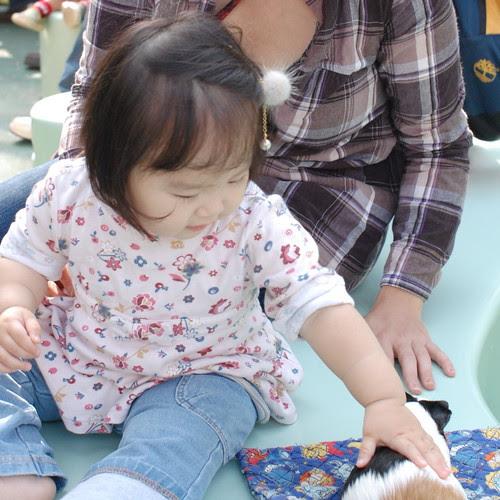 Miyu in a zoo