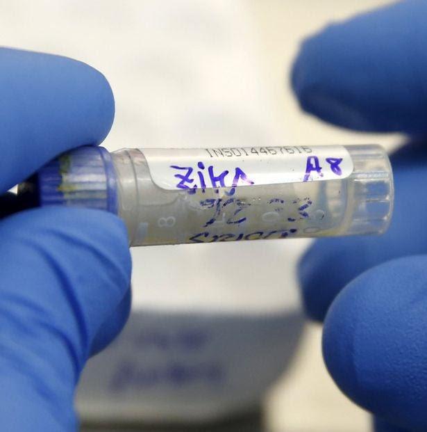 Un laboratorio indio asegura tener lista la primera vacuna para el virus del Zika