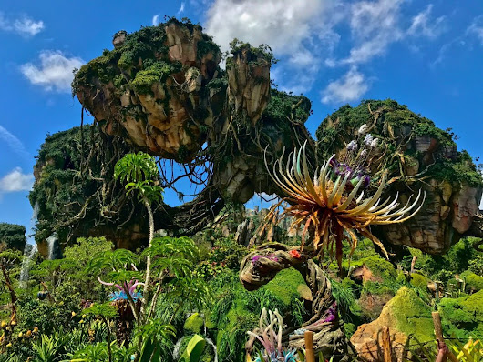 6 Must-Do's at Walt Disney World Resort this Summer