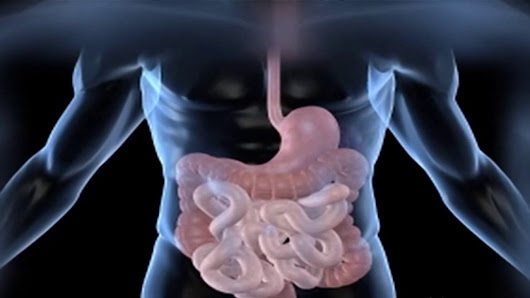 Unknown Facts About Irritable Bowel Syndrome - GiDoctor