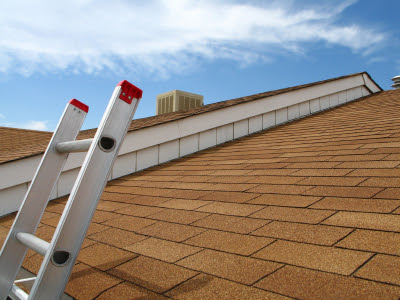 Roofing Contractor in Irvington, KY