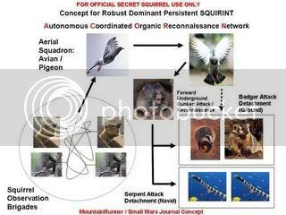 Squirrel Terrorism Master Plan