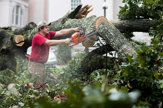 Gainesville Campus Recovers from Storm Damage - Brenau University