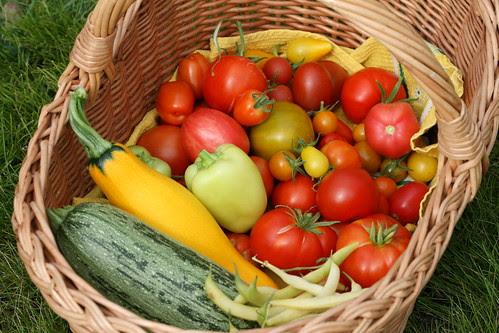 We went to see friends and brought along some vegetables from our garden / Läksime sõpradele külla oma aiast korjatud külakostiga