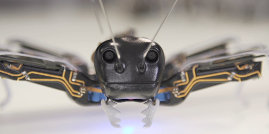 Bionic ants are future of robots - Business Insider