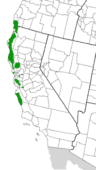 Image Result For Northern California