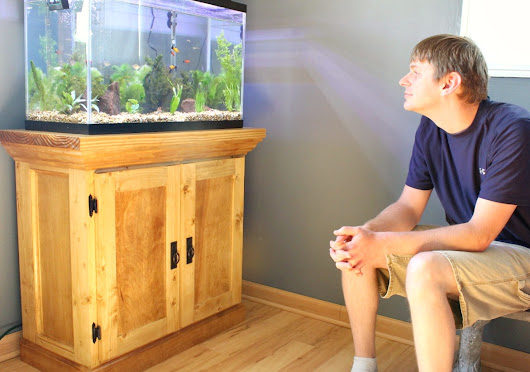 How to Build an Aquarium Cabinet Stand--The Start of a Man Cave