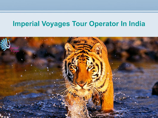 Imperial voyages tour operators in india