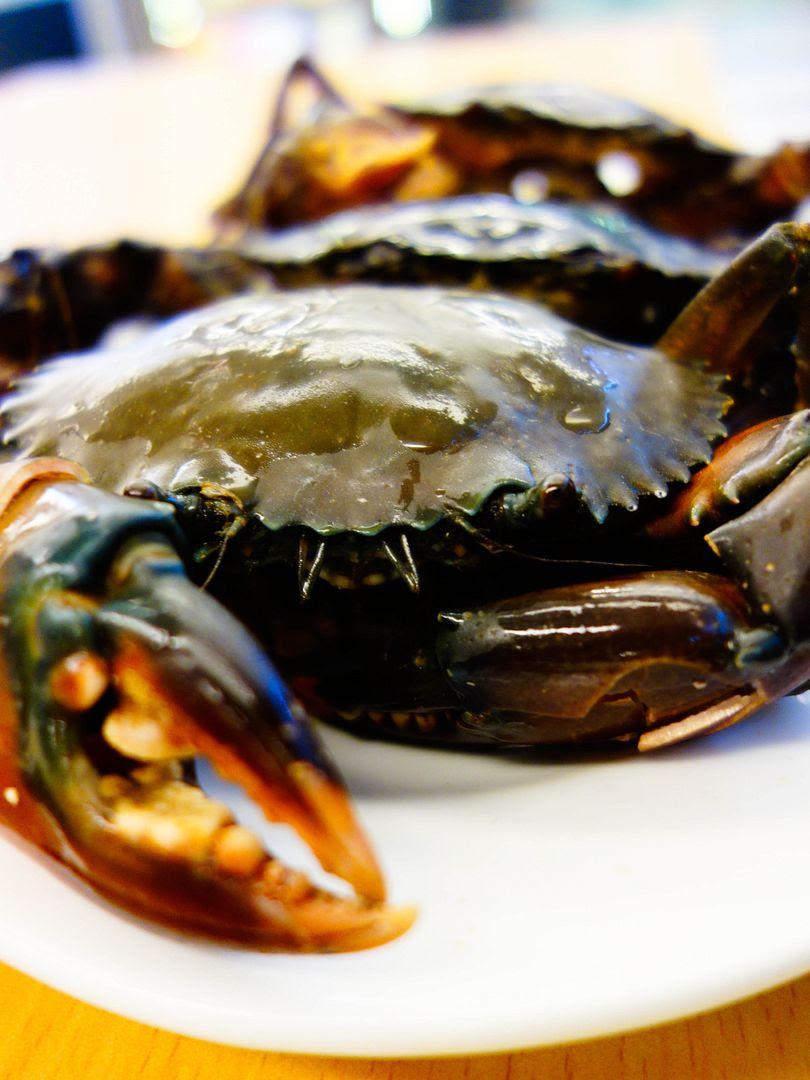 photo crabs_1.jpg