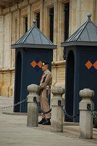 Guard in front of the Palace, Luxembourg.JPG