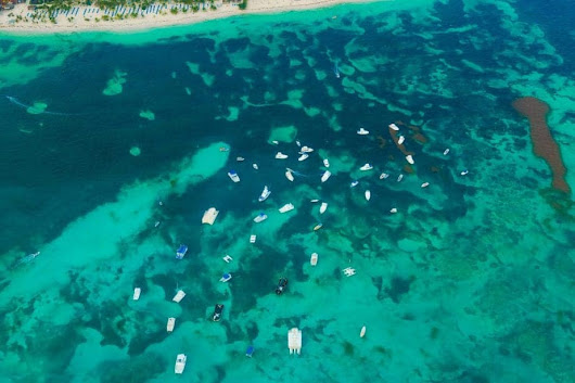 Diving Into The Best Spots In The Dominican Republic - Anita Hendrieka