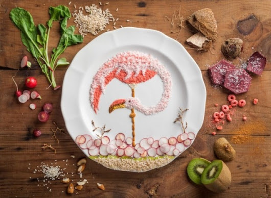 A Tribute to Budgie, Delightful Bird Illustrations Made out of Food