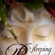 Book Review: Sleeping Beauty and the Beast by Melissa Lemon