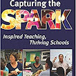 Capturing the Spark: Inspired Teaching, Thriving Schools: David B. Cohen: 9780997686807: Amazon.com: Books