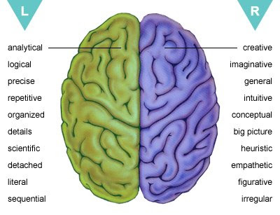 Left vs. Right Brain: Life, Meaning, & Personality Type