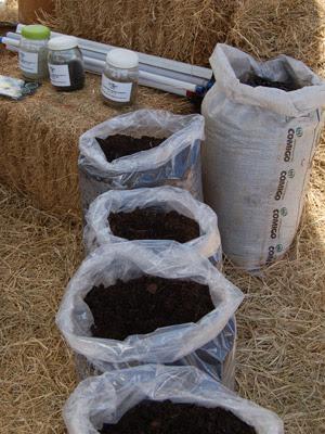 Em abril, Embrapa vai lançar dois fertilizantes orgânicos produzidos a partir de resíduos poluentes. (Foto: Divulgação / Embrapa / Vinicius Benites)