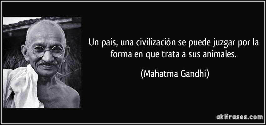 Un país, una civilización se puede juzgar por la forma en que trata a sus animales. (Mahatma Gandhi)