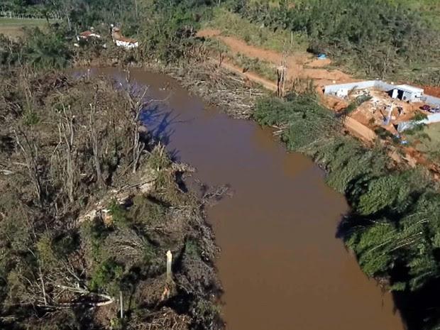 Mata ciliar às margens do Rio Atibaia, em Campinas (Foto: Reprodução EPTV)