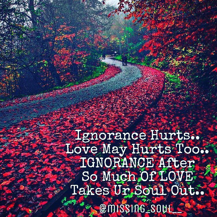 Ignorance Hurtslove May Hurts Tooignorance After So Much Of