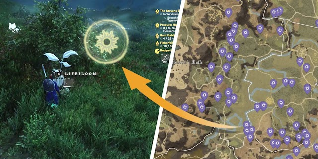 How to Find Life Motes in New World (& What They're For)